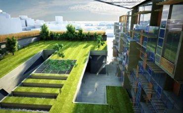 Yeşil Çatı Uygulaması